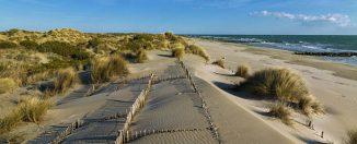 Plage et dunes de Camargue